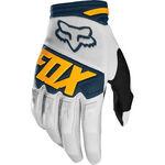 _Fox Dirtpaw Race Gloves | 22751-097-P | Greenland MX_